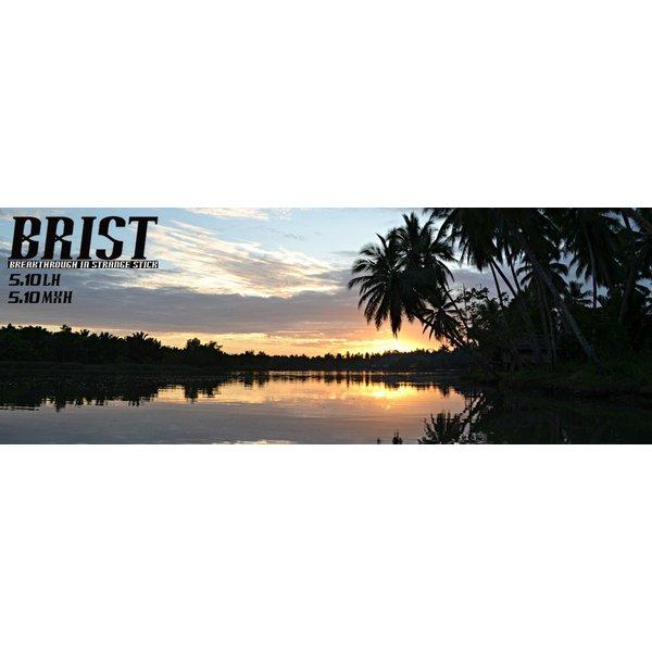 Fishman フィッシュマン / BRIST 5.10LH