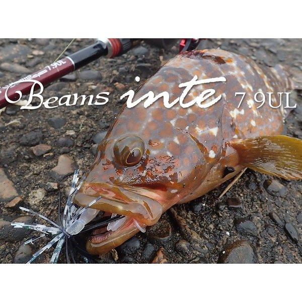 Fishman フィッシュマン / Beams inte 7.9UL