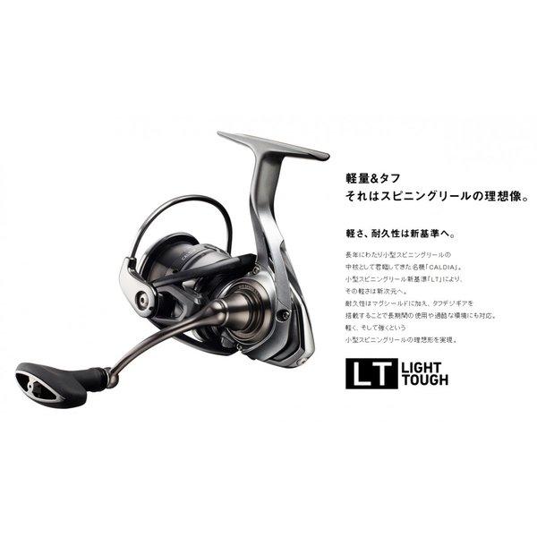 DAIWA / 18カルディア LT2500-XH