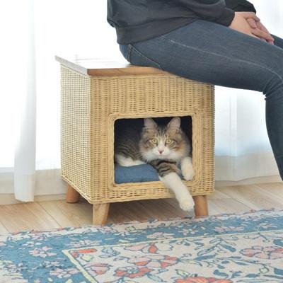 スクエアペットスツール ペットハウス 椅子 スツール チェア 新発売 毎日がバーゲンセール ペット用ベッド 可愛い 丸い家具 四角 ベージュ 新生活 猫ハウス 天然木脚 新居 ラタン 愛猫 グリーン 籐 お手入れ簡単