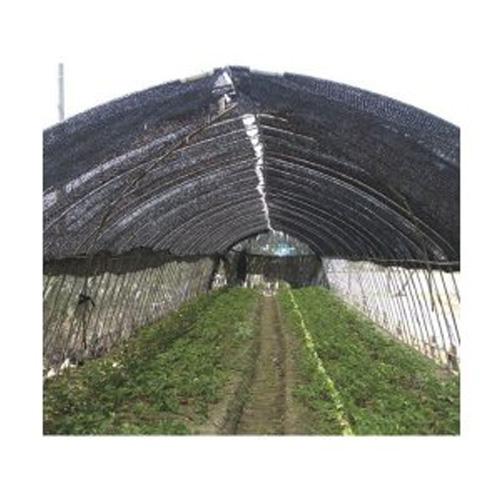 nouオリジナル 折り畳み遮光ネット 6m×50m 黒 65% 直送品 手軽で安価な遮光ネットです。(遮光ネット 日よけ 遮光ネット 農業 農業用 資材 農業用資材 農作業 園芸 園芸用 園芸用品 園芸グッズ 園芸資材 園芸用資材 ガーデニング ガーデン)