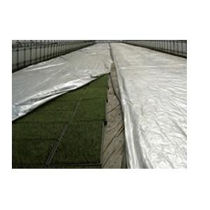 買い物 ふるさと割 不織布ポリシャインS 厚さ0.06mm×長さ50m×幅200cm