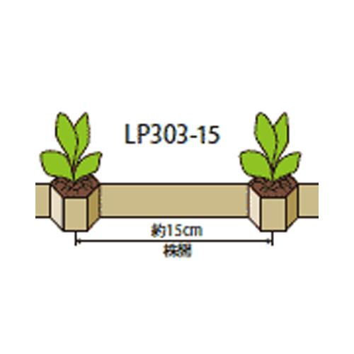 チェーンポット LP303-10 75冊