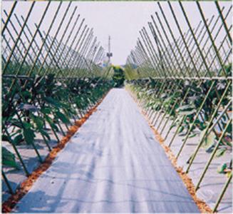 アグリシート シルバーグレー 長さ100m×幅150cm 遮光性が高く、防草効果抜群の防草シートです。(雑草防止シート 雑草シート 庭 雑草対策 農業資材 草防止シート 農業用品 農業用 道具 ガーデニング 園芸資材 透水性 保温 ぬかるみ防止 ハウス ビニールハウス 家庭菜園)