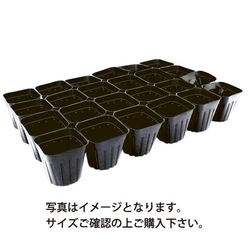 育苗連結ポット チープ ☆最安値に挑戦 9.0cm 縦4列×横6列