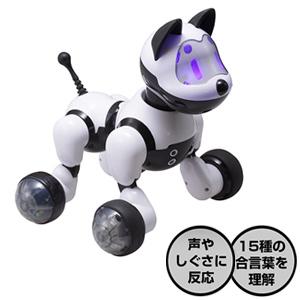 ロボット犬 歌って踊ってわんわん RI-W01 【送料無料・代引料無料・保証付】 おしゃべりロボット おしゃべり人形 おしゃべり犬 コミュニケーショントイ おしゃべりトイ