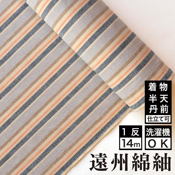 【送料無料】日本の縞 遠州縞 晩秋綿 着物 洗える着物 大人可愛い おしゃれな きれいめ