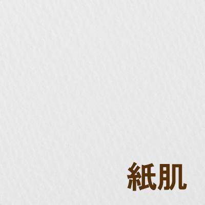 阿波罗写生智人 (HOMO) H F6