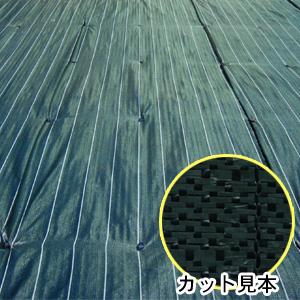 防草・防塵用 ライン入りグランドバリアクロス3 GBC-3 2m×50m巻 萩原工業 ODグリーン/ブラック