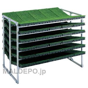 傾斜型 苗箱収納棚 NC-60K 昭和ブリッジ 5x2x6箱【受注生産品】【個人法人別運賃】