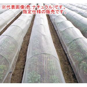 防虫ネット(防虫網) サンサンネット EX2000 2.1x100m 日本ワイドクロス 目合1mm 遮光率90% ナチュラル【営業所留めのみ】