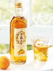 あんず のお酒 永昌源 通販 返品交換不可 激安 杏露酒 500ml シンルウチュウ アルコール分14%