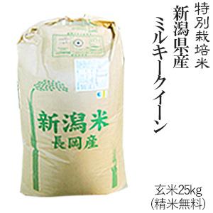 令和元年産特別栽培米新潟産ミルキークイーン玄米25kg/ 白米4.5kg×5袋【送料無料】(一部地域を除く)【あす楽対応_本州】【あす楽対応_関東】【あす楽対応_四国】