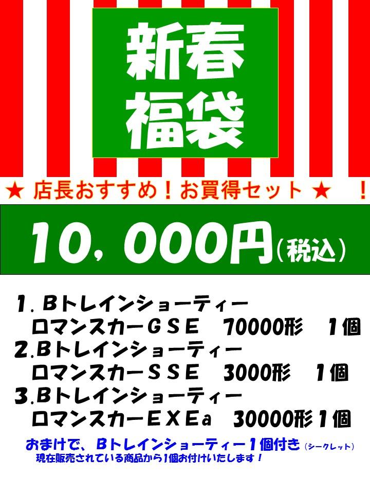 1月3日よりお申込み順に発送2021新春福袋!【店長オススメセット】