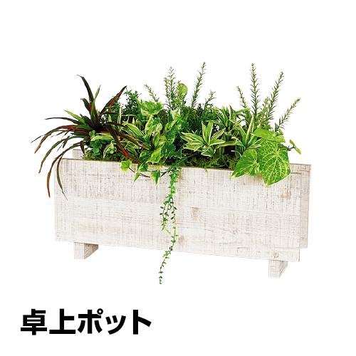 ベルク フェイクグリーン インテリアグリーン 観葉植物 人工 卓上ポット GR4240