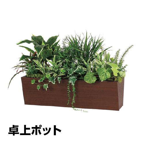 ベルク フェイクグリーン インテリアグリーン 観葉植物 人工 卓上ポット GR4312