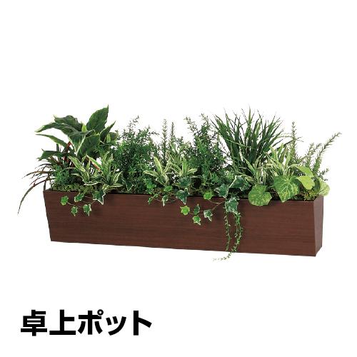 ベルク フェイクグリーン インテリアグリーン 観葉植物 人工 卓上ポット GR4314