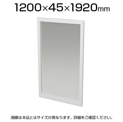 いいスタイル TFパネルくもりガラス W4 TF-1219G-H W4 幅1200×奥行45×高さ1920mm, 信州の特産品まるたか:670aaea9 --- supercanaltv.zonalivresh.dominiotemporario.com