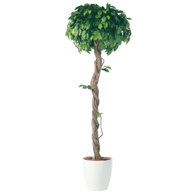 観葉植物 人工 樹木 フィッカスベンジャミナシングル 高さ1800mm Lサイズ 鉢:RP-300