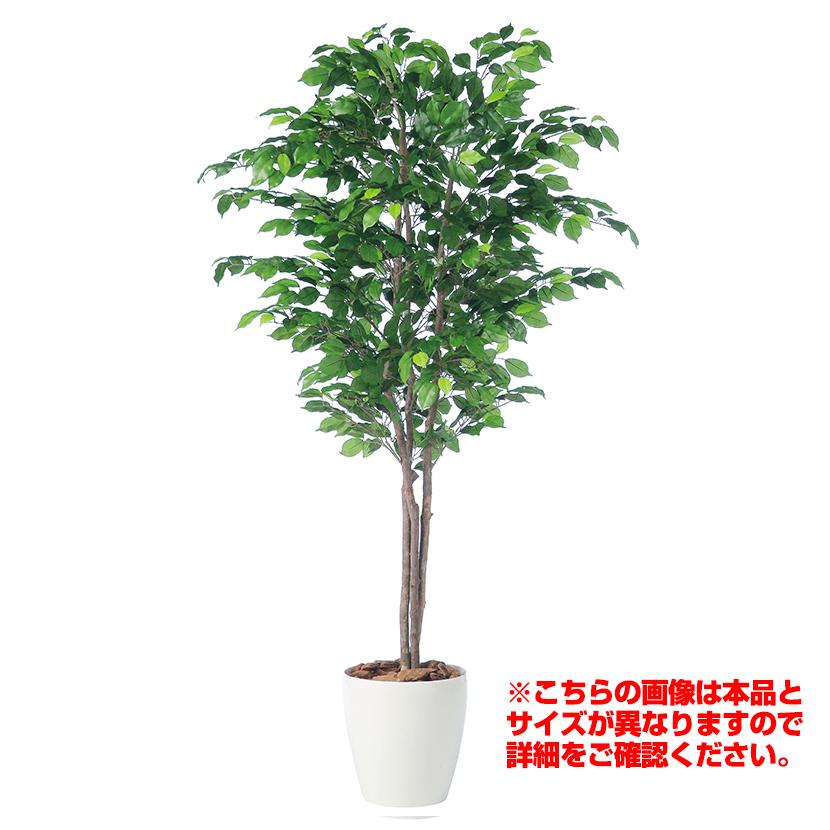 観葉植物 人工 樹木 フィッカスベンジャミナトリプル 高さ1500mm Mサイズ 鉢:RP-265