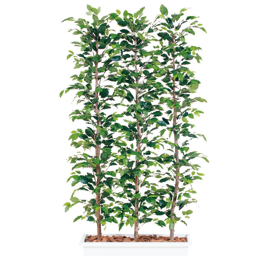 観葉植物 人工 樹木 フィッカスベンジャミナパーテーション 高さ1800mm Lサイズ 鉢:ガーデンペット