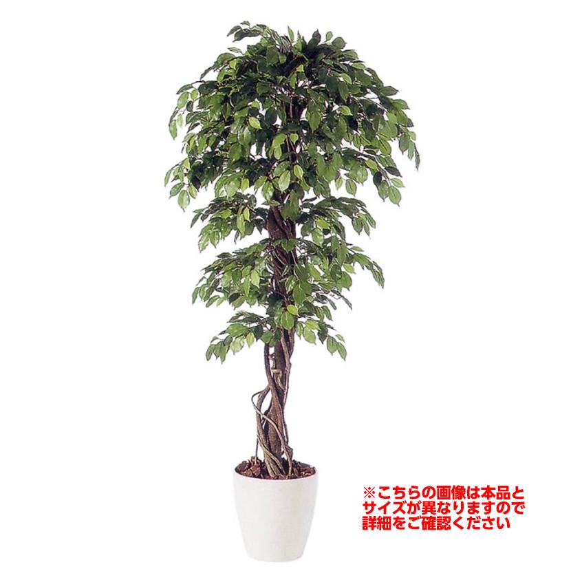 観葉植物 人工 樹木 フィッカスベンジャミナリアナ 高さ2000mm Lサイズ 鉢:RP-370