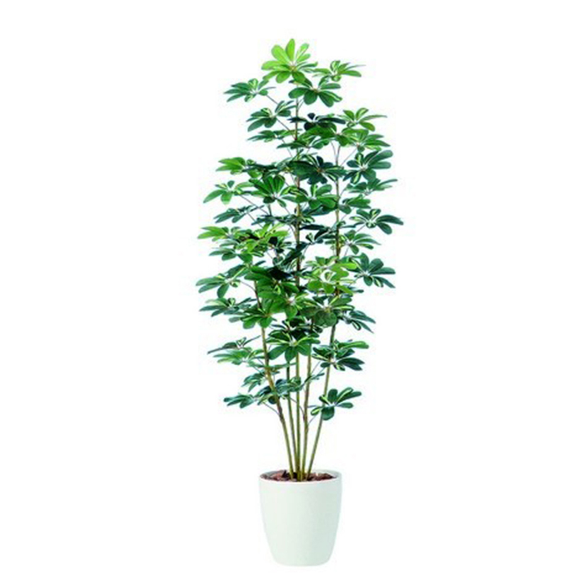 観葉植物 人工 樹木 シェフレラ 高さ1800mm Lサイズ 鉢:RP-300