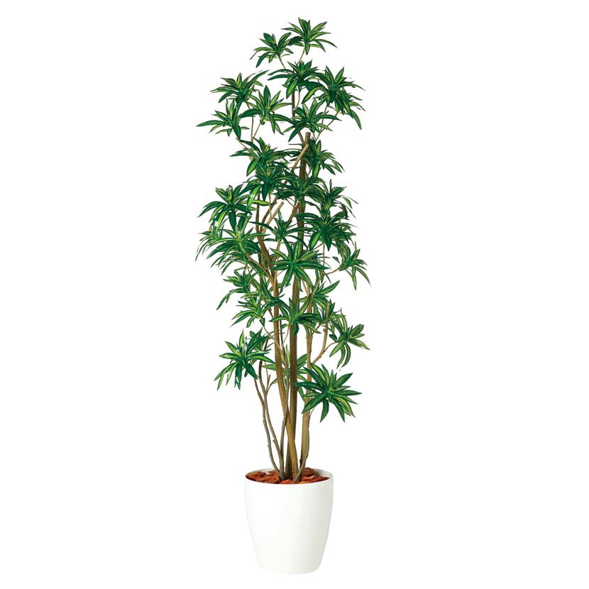 観葉植物 人工 樹木 ソング・オブ・ジャマイカ FST 高さ1800mm Lサイズ 鉢:RP-300