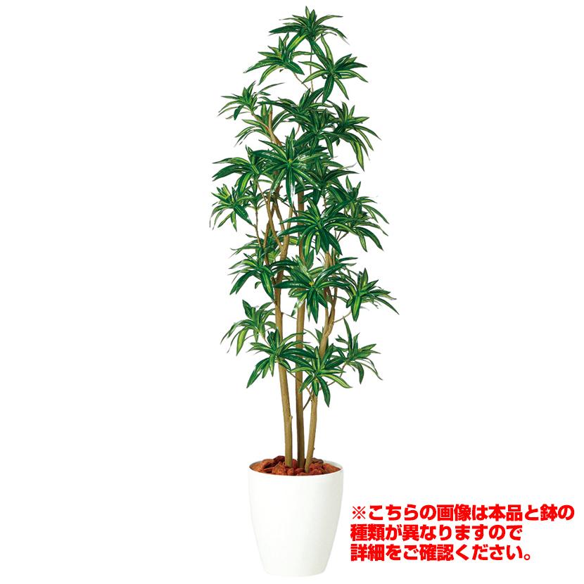 【7月上旬入荷予定】観葉植物 人工 樹木 ソング・オブ・ジャマイカ FST 高さ1500mm Mサイズ 鉢:懸崖8号