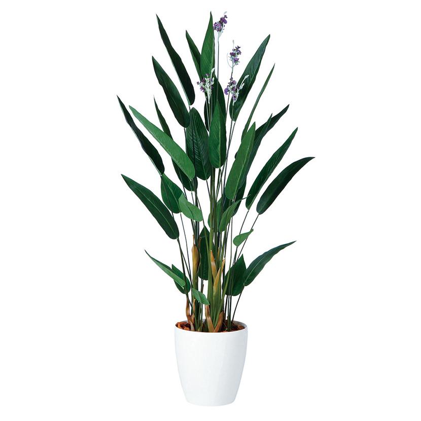 観葉植物 人工 樹木 カンナ 高さ1600mm Mサイズ 鉢:RP-300