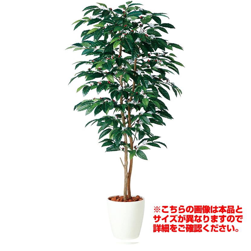 観葉植物 人工 樹木 コーヒーデュアル 高さ1500mm Mサイズ 鉢:RP-265