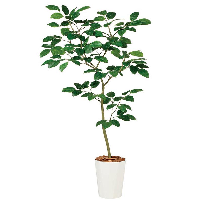 【10月上旬入荷予定】観葉植物 人工 樹木 ベンガルボダイジュ FST 高さ1500mm Mサイズ 鉢:クォーツ240