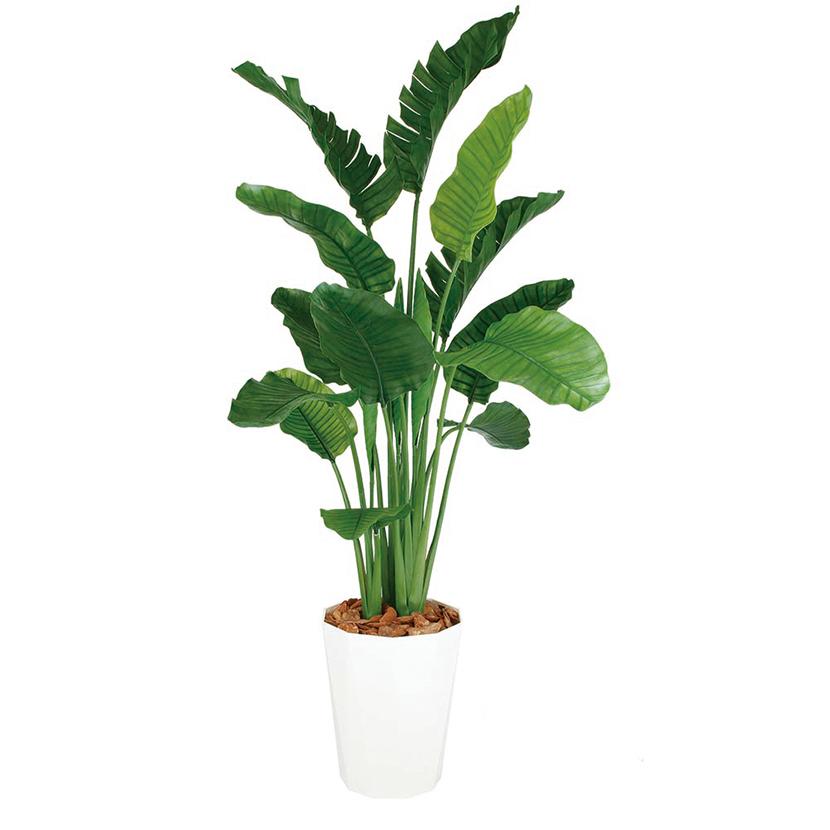 観葉植物 人工 樹木 ストレリチア・オーガスタ MIX 高さ2000mm Lサイズ 鉢:クォーツ360
