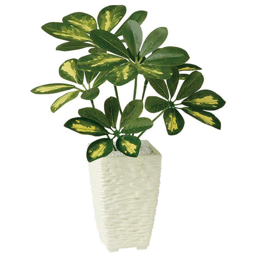 観葉植物 人工 樹木 シェフレラポット 高さ350mm Pサイズ 鉢:Pスクエア(WH)