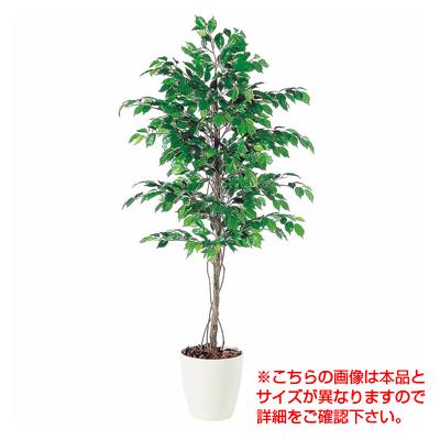 観葉植物 人工 樹木 フィッカスベンジャミナ 高さ1500mm Mサイズ 鉢:RP-265