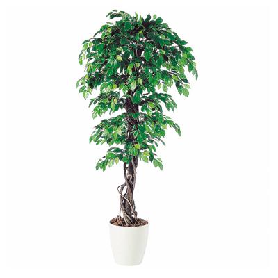観葉植物 人工 樹木 フィッカスベンジャミナリアナ 高さ1800mm Lサイズ 鉢:RP-300