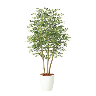 観葉植物 人工 樹木 ゴールデンリーフ 高さ1500mm Mサイズ 鉢:RP-265