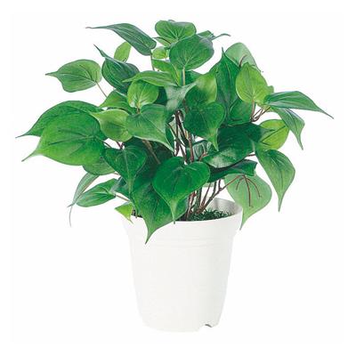 観葉植物 人工 樹木 オキシカルジウム 高さ350mm Pサイズ 鉢:CV-05