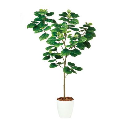 観葉植物 人工 樹木 ウンベラータ FST 高さ1800mm Lサイズ 鉢:RP-300