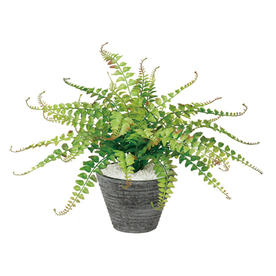 観葉植物 人工 樹木 ワイルドグラスファン 高さ350mm Pサイズ 鉢:PラウンドS(WH)
