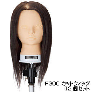美容用品 アサヒ iP300 カットウィッグ 12個