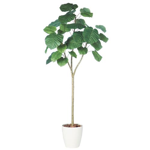 送料無料 代引不可【ウンベラータ RP鉢タイプ】W100cm×H210cmフェイクグリーン 人工観葉植物 インテリアグリーン オフィスグリーン 人工樹木 造花ウンベラータ