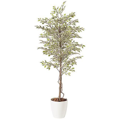 送料無料 代引不可【ベンジャミナ スターライト RP鉢タイプ】W90cm×H200cmフェイクグリーン 人工観葉植物 インテリアグリーン オフィスグリーン 人工樹木 造花ベンジャミナ