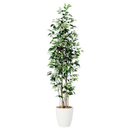 送料無料【ベンジャミン スリム FST RP鉢タイプ】W50cm×H180cmフェイクグリーン 人工観葉植物 インテリアグリーン オフィスグリーン 人工樹木 造花ベンジャミナ