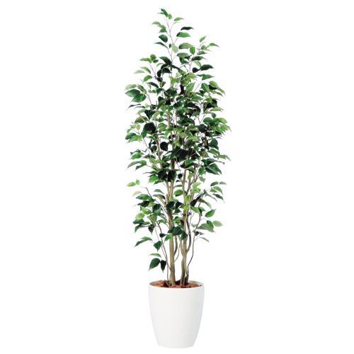 送料無料【ベンジャミン スリム FST RP鉢タイプ】 W50cm×H150cmフェイクグリーン 人工観葉植物 インテリアグリーン オフィスグリーン 人工樹木 造花ベンジャミナ