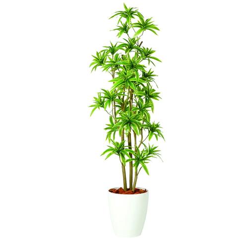 送料無料【ソング・オブ・インディア FST RP鉢タイプ】W50cm×H150cmフェイクグリーン 人工観葉植物 インテリアグリーン オフィスグリーン 人工樹木 造花ドラセナ