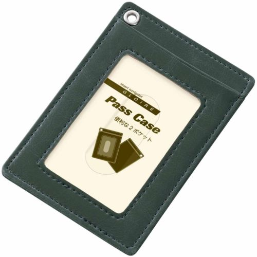 RAYMAYFUJII single pass case bizarrerie Waal green GLP822M