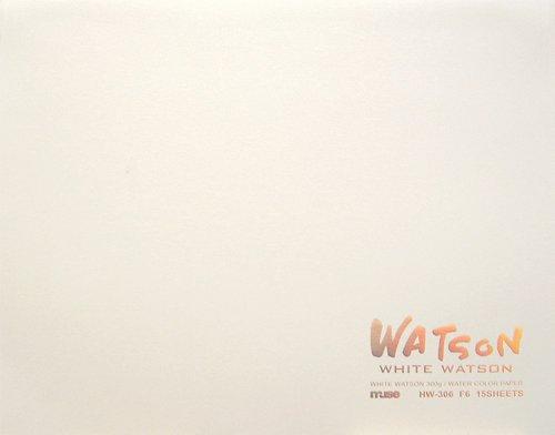 ミューズ ホワイトワトソンブロック F6 シロ HW-306(5セット)