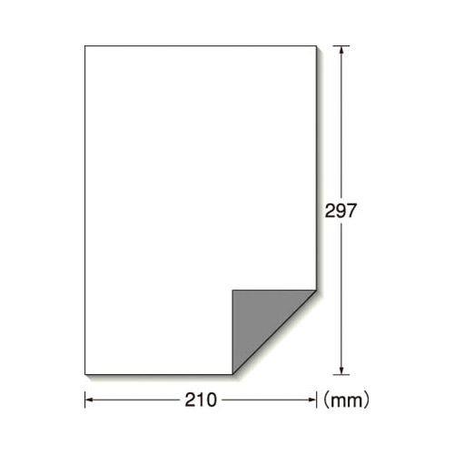 エーワン 屋外でも使えるラベル 下地が透けない ツヤ消しホワイト 10枚 31040(10セット)
