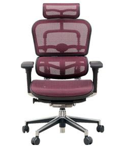 Ergohuman エルゴヒューマンチェア ベーシック イス 椅子 エラストメリックメッシュ ハイタイプ レッド